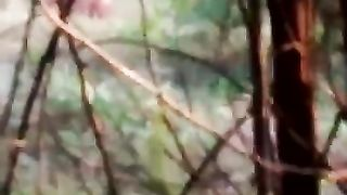 Desi woman in red takes a pee in the forest--_short_preview.mp4