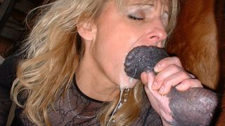 Blonde mature sucks a horse enjoying a huge black dick in her horny mouth--_short_preview.mp4