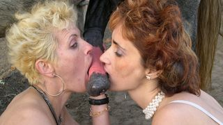 Mature lesbians get pleasure of zoo oral sex in a horse fuck mature video--_short_preview.mp4