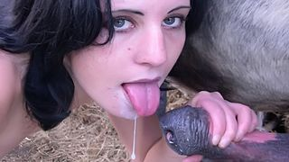 Beautiful brunette moaning with horse - live beastiality sex--_short_preview.mp4