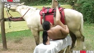 Stallion pushing strong - Beastiality XXX--_short_preview.mp4