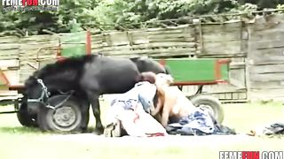 Horse busting asses skinny women - Beastiality XXX tube--_short_preview.mp4