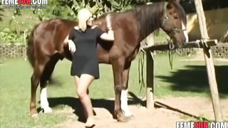 Brazilian zoofilia with horses - Beastiality XXX tube--_short_preview.mp4