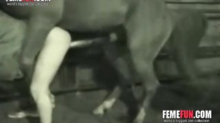 Pony beats the peasant ass - Beastiality XXX--_short_preview.mp4