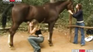 Dutch slut deepthroats a horse and gives a perfect handjob in a xxx beastiality scene--_short_preview.mp4