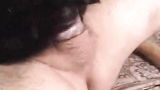 Bitch sitting on her owner's cock--_short_preview.mp4
