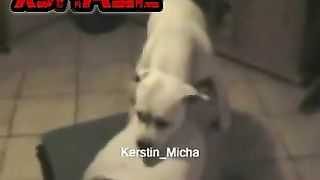 Sex movies with dogs and their naughty mistress--_short_preview.mp4