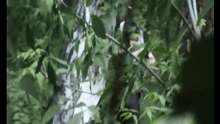 Blonde white Russian girl in the high grass squats and pisses--_short_preview.mp4